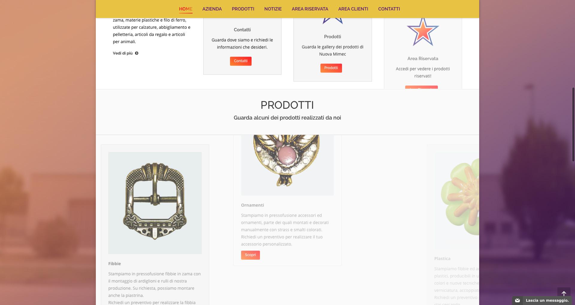 Sito web Nuova Mimec - Home page - Effetti di caricamento